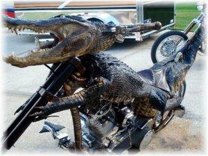 Croc Bike