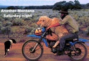 Saturday Night In Montana